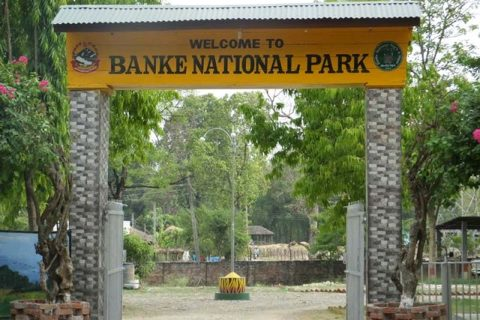 Nepal Visit Year-2020 : Jungle Safari Open At Banke National Park