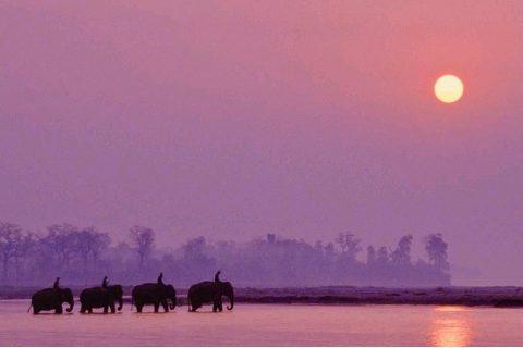 नेपाल भ्रमणवर्ष २०२० : फोबर्स पत्रिकाले राख्यो नेपाललाई २ विधामा उत्कृष्ट देशको सूचीमा