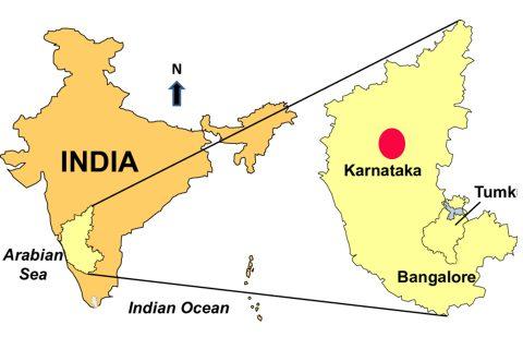 कोरोनाको विश्वयापी प्रकोप : भारतमा पनि एकको ज्यान गयो, संक्रमितको संख्या ६० पुग्यो