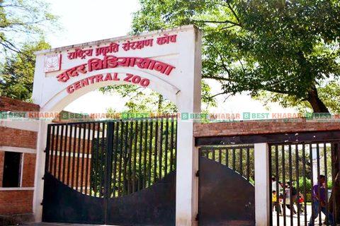 कोरोना कहर : ललितपुर जावालाखेलको सदर चिडियाखानामा प्रवेश निषेध