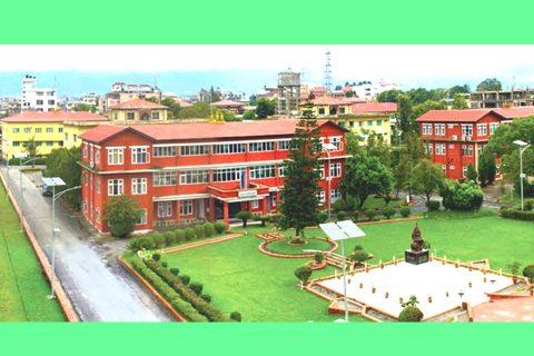 काठमाडौंमा डाक्टर कुटपिट प्रकरण : डिएसपी लम्साललाई जिम्मेबारीबाट हटाईयो